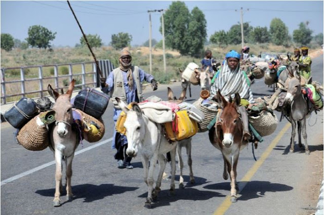 Fulani-herdsmen-benue