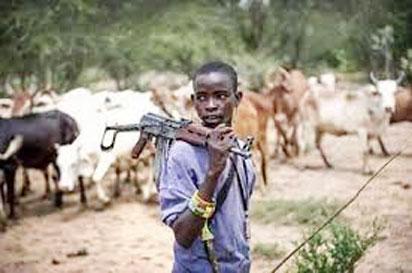 fulani herdsmen boy with riffle