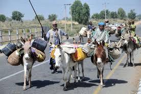 Hausa-Fulani-Herdsmen-00