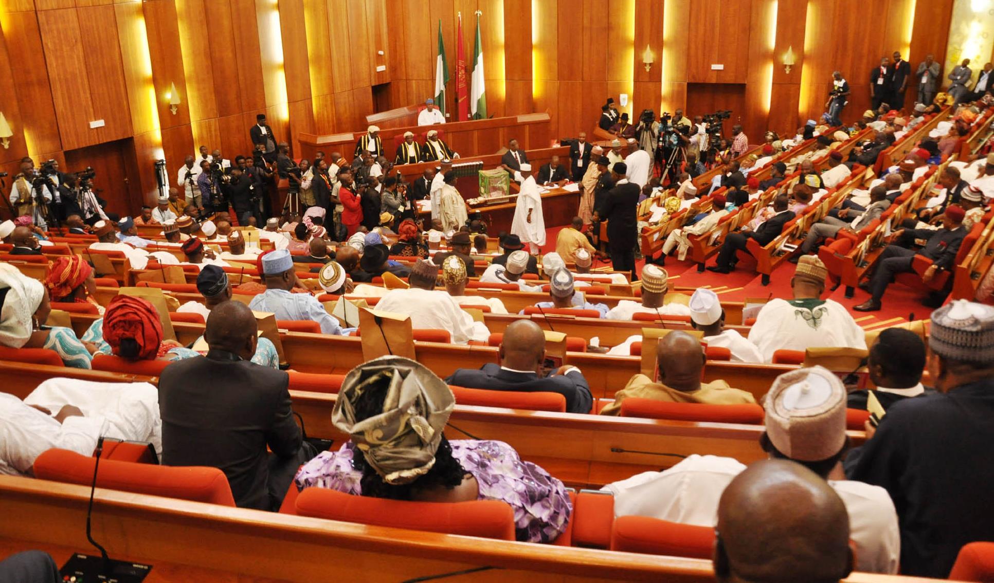 naija senate house of assembly