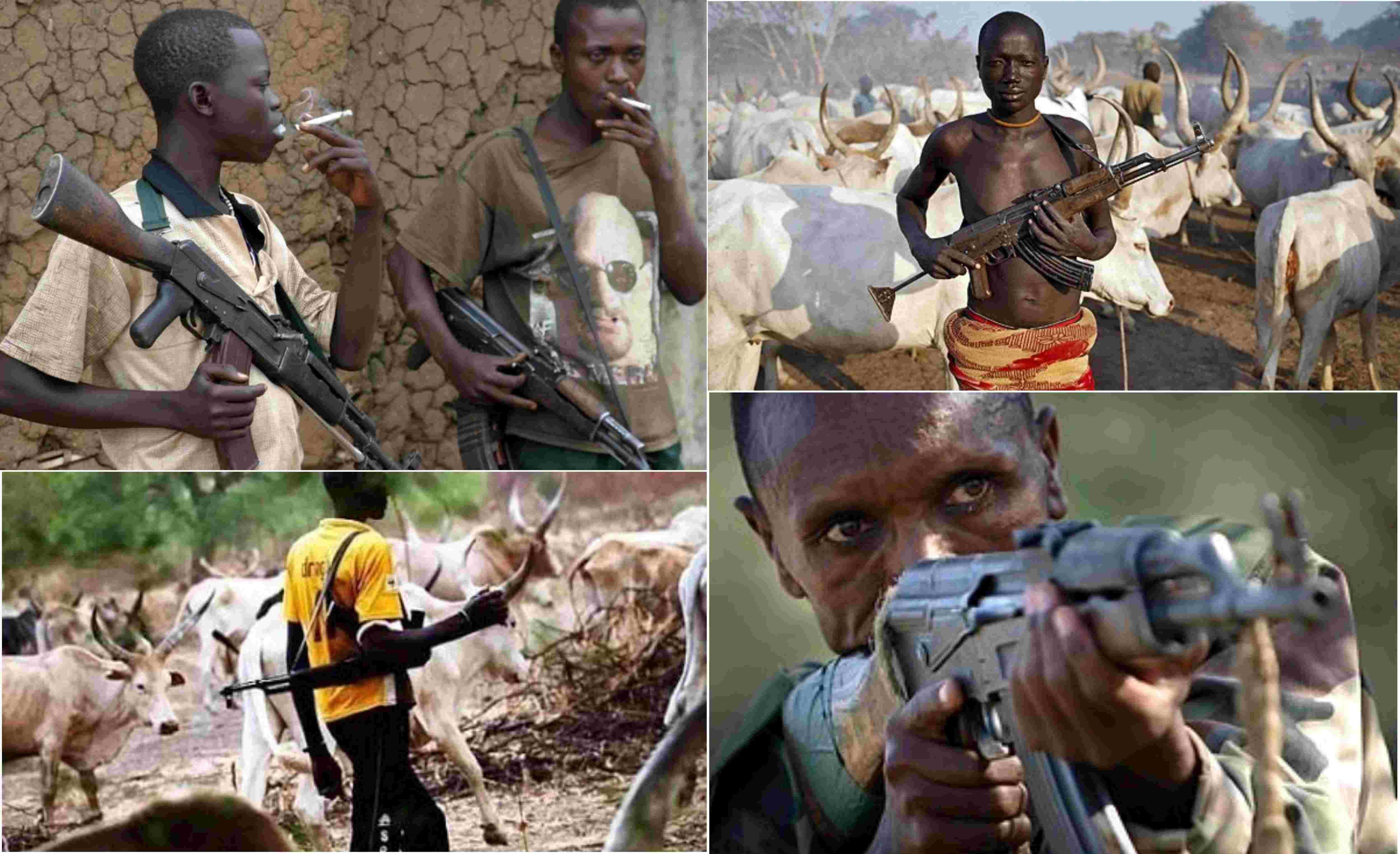 Fulani picmix